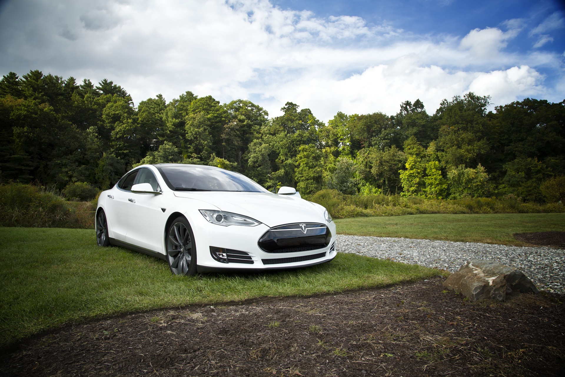 Tesla car sitting on the lawn of a driveway.