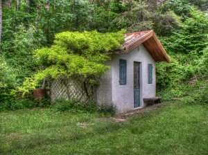 Cottage with overgrown tres and vines on the side.
