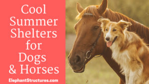 Use metal buildings for summer shelter for dogs and horses